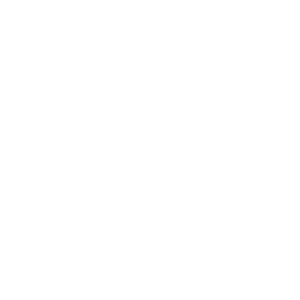 Campus Labs Node icons