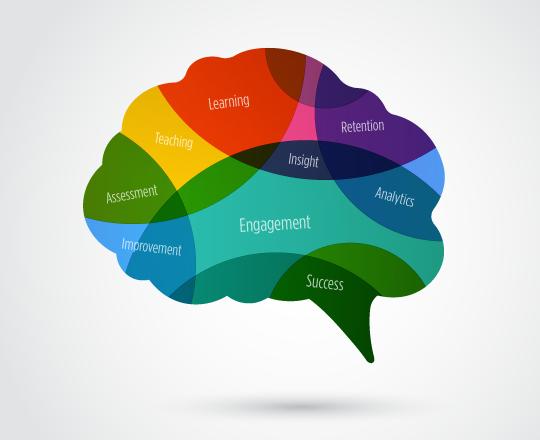 Ven Diagram Brain